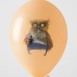 1020 owl