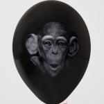 199 monkey